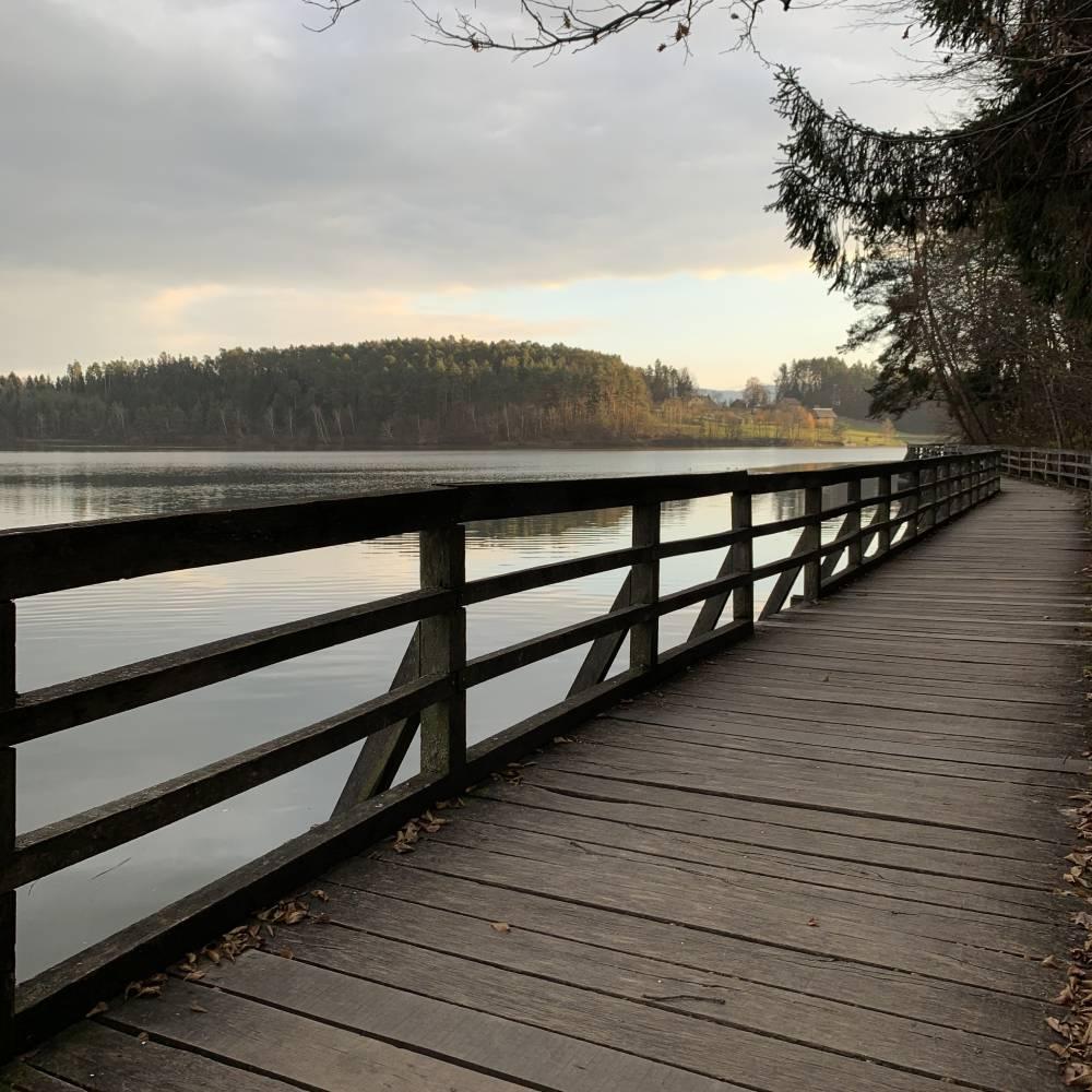 Pot-ob-Smartinskem-jezeru